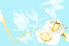 Capítulo de las rosas blancas en fondo azul Fotografía de archivo