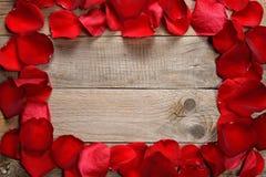 Capítulo de pétalos color de rosa rojos Fotos de archivo libres de regalías