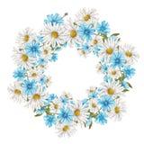 Capítulo de wildflowers Imagenes de archivo