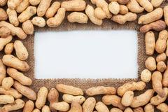 Capítulo hecho de la arpillera con el cacahuete secado Fotos de archivo libres de regalías
