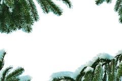 Capítulo hecho de ramificaciones del pino con nieve Imagen de archivo