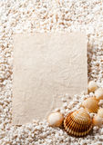 Capítulo hecho de shell con la tarjeta para el texto Imagen de archivo