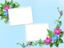Capítulo para la foto con las orquídeas Fotos de archivo libres de regalías
