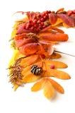 Capítulo, una esquina de las hojas de otoño y frutas Foto de archivo