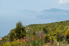 Cap Canaille Stock Images