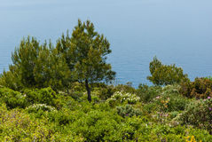 Cap Canaille Royalty Free Stock Images