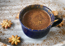 Cap of cocoa with cinnamon and cookies Royalty Free Stock Images