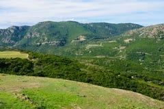 Cap Corse Landscape Stock Images