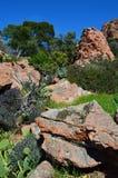 Cap dramont, esterel massif Royalty Free Stock Photo