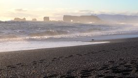 Cap Dyrholaey, Islande clips vidéos