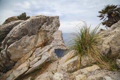Cap Formentor Mallorca. Landscape at Cap Formentor Mallorca Royalty Free Stock Images