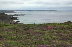 Cap Frehel (Brittany, France): the coast Stock Photo