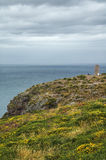 Cap Frehel (Brittany, France): the coast Royalty Free Stock Photography