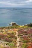 Cap Frehel (Brittany, France): the coast Royalty Free Stock Images