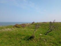 Cap Gris-Nez (France). Picture of Cap Gris-Nez (France Stock Photography