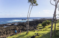 Cap mechant coastline, La Reunion island, france. A view in CAPE MECHANT, LA REUNION, FRANCE, APRIL 24 :  Cape Mechant coastline, La Reunion island, Indian Ocean Royalty Free Stock Image
