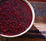 Cap red whortleberry Stock Photography