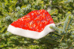 Cap of Santa Claus on a fur-tree Stock Photo