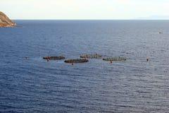Cap Sounion sur la côte du sud du continent Grèce 06 20 2014 Paysage marin de la taille de falaise du cap Sounion, où Photos libres de droits