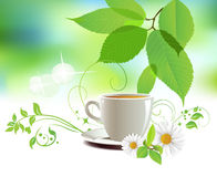 Cap of tea. All elements and textures are individual objects. Vector illustration scale to any size Stock Images