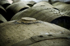 Cap wine barrel. Detail of wine barrel, cap in the foreground royalty free stock photos