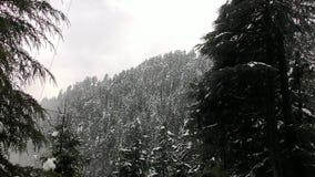 Capa blanca de bosques himachal Fotografía de archivo libre de regalías