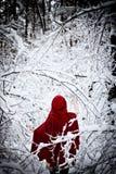 Capa con capucha roja Fotos de archivo libres de regalías