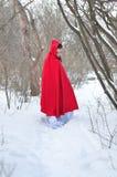 Capa con capucha roja en el bosque del invierno Imagenes de archivo