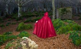 Capa con capucha roja en el bosque oscuro Imagen de archivo libre de regalías