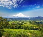 Capa da montagem e capa River Valley Imagem de Stock Royalty Free