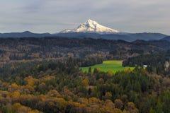 Capa da montagem sobre Barlow Trail Route Imagens de Stock