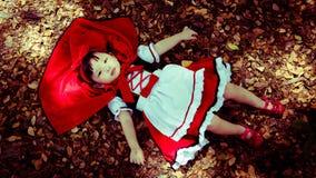 Capa de equitação vermelha Fotografia de Stock Royalty Free