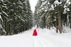Capa de equitação vermelha na floresta foto de stock
