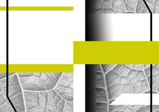 Capa do livro dianteira e quarta completa Tema abstrato da natureza Imagens de Stock Royalty Free