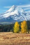 Capa do Mt na queda de eastside fotos de stock royalty free