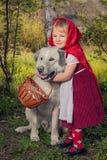 Capa e lobo vermelhos de equitação Foto de Stock Royalty Free