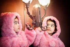 Capa peluda y reflexión Fotos de archivo libres de regalías