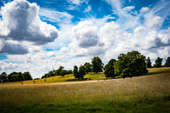 Capability Browne Landscape. Classical English Capability Browne landscape with summer sky stock image