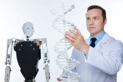 Capable trained scientist working on ambitious genetic project Royalty Free Stock Photos