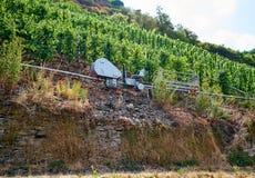A capacidade alemão encontra a eficiência da colheita da uva imagem de stock royalty free