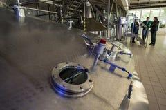 Capacità d'acciaio con la conifera della birra Fotografia Stock