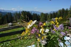 Capanna in alpi tedesche con i fiori Immagini Stock