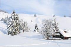 Capanna alpina II della neve Immagine Stock Libera da Diritti