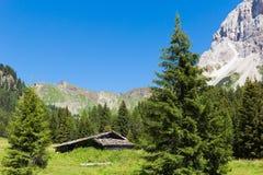 Capanna alpina in montagna Immagine Stock