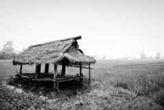 Capanna con il giacimento del riso, Tailandia Fotografia Stock