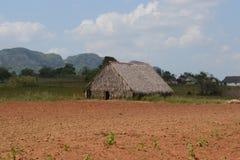 Capanna cubana rurale fotografia stock