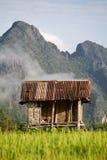 Capanna del riso Fotografie Stock