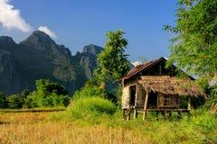 Capanna del ` s dell'agricoltore su un campo in Vang Vieng, provincia di Vientien, Laos Fotografia Stock