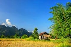 Capanna del ` s dell'agricoltore su un campo in Vang Vieng, provincia di Vientien, Laos Immagini Stock