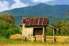 Capanna del ` s dell'agricoltore su un campo in Vang Vieng, provincia di Vientien, Laos Immagine Stock